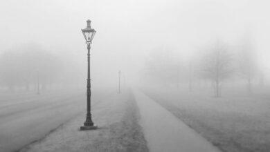 Photo of El mundo emocional, la neblina con la que percibo el mundo