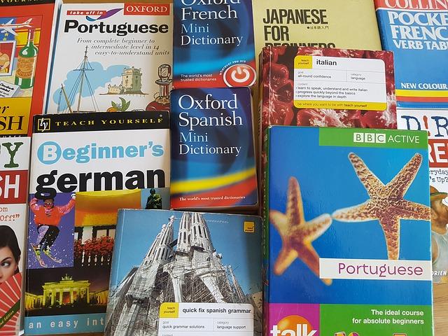 diccionario idiomas