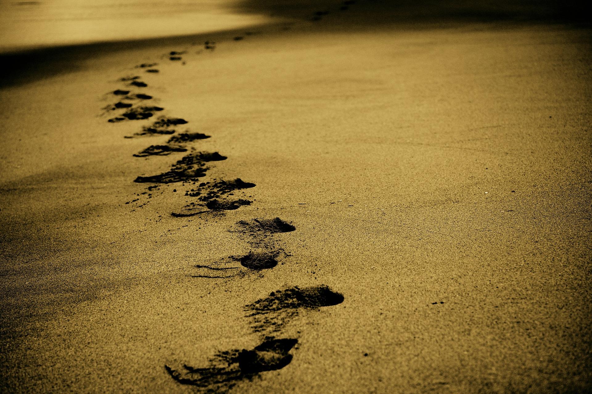 camino de huellas metafora de autonomía personal